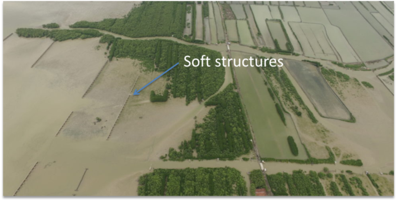 case study demak mangrove restoration soft structure implemented // cs_demak-mangrove-restoration-soft-structure-implemented.png (395 K)