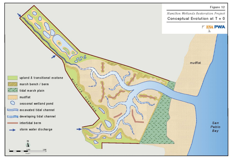 case study restoration hamilton wetlands impression // cs_restoration-hamilton-wetlands-impression.png (406 K)